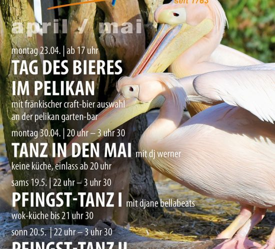 Der pelikan im april mai